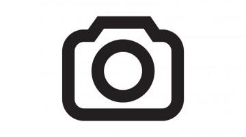 https://afejidzuen.cloudimg.io/crop/360x200/n/https://objectstore.true.nl/webstores:pouw-nl/03/201908-leon-4.jpg?v=1-0