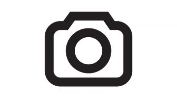https://afejidzuen.cloudimg.io/crop/360x200/n/https://objectstore.true.nl/webstores:pouw-nl/09/arteon-avatar.png?v=1-0